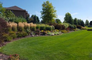 contact sunworks for beautiful lawns