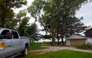Safely removing tree after a lightning strike