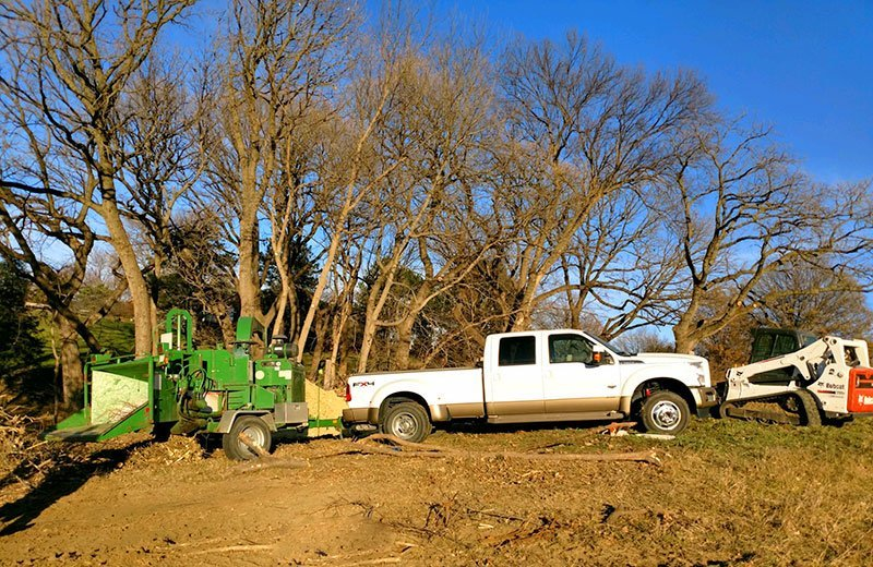 Large lot tree removal